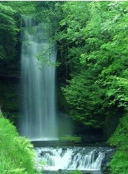 glencar_waterfall.jpg (Glencar Waterfall.jp)